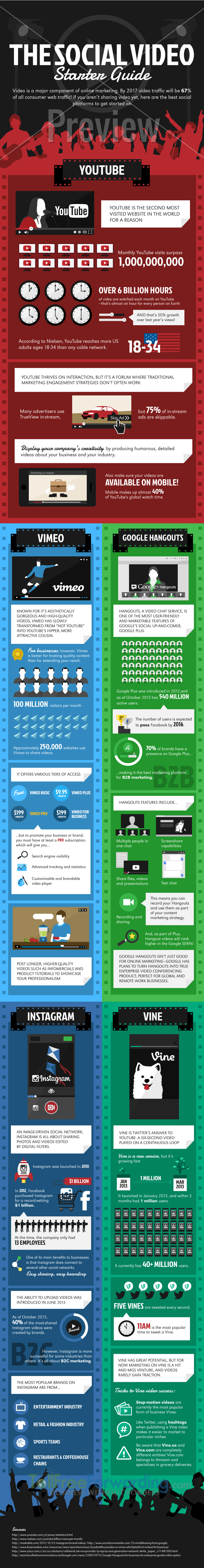The social Media Video Infographic