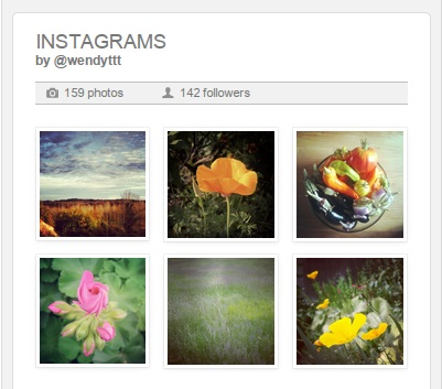 Instagram image gallery plugin