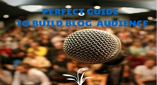 Perfect Guide to Effectively Build a Blog Audience