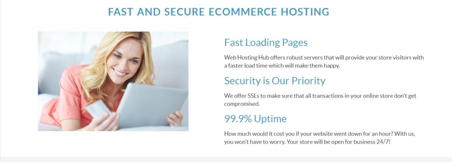 Ecommerce Hosting- Webhostinghub Review