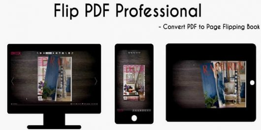 Flip PDF Professional Review