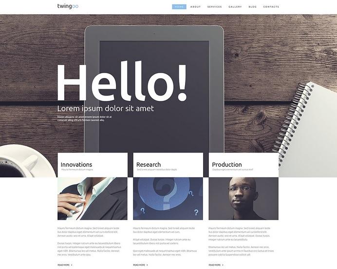 Promote Business  Success WordPress Website