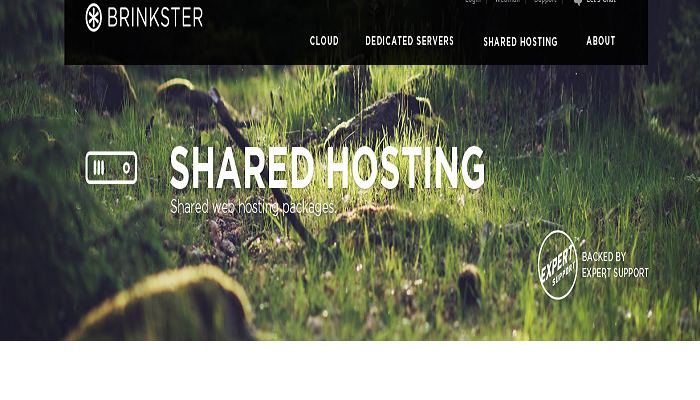 Brinkster hosting coupons promo codes discount codes