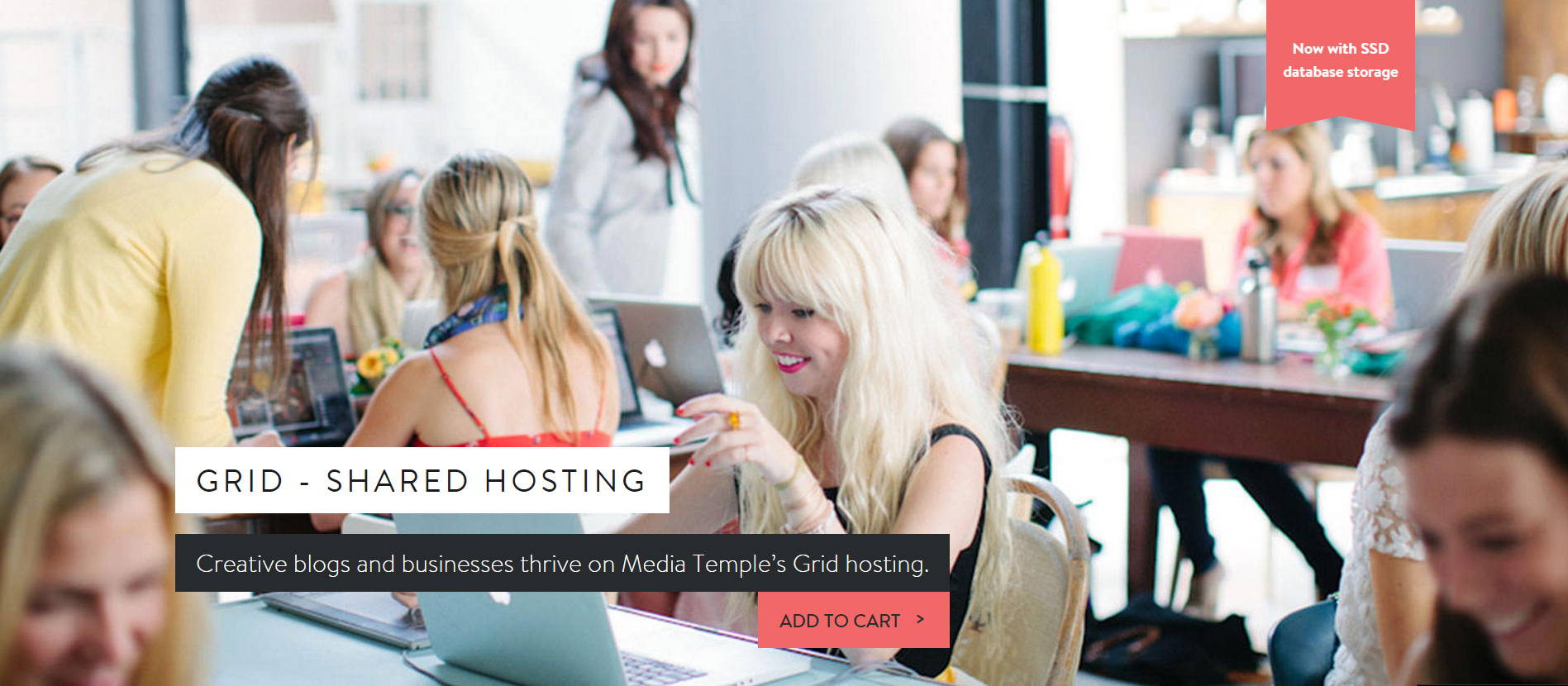 Media temple hosting plan shared hosting- Media Temple Coupon Codes