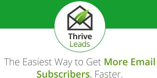Thrive themes bfeatures