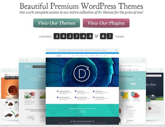 elegant themes review homepage