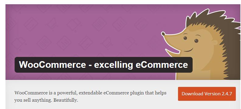 WooCommerce WordPress Plugins