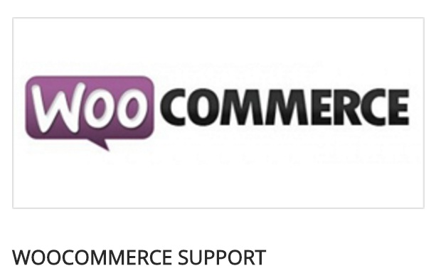 Pixova Lite review woocomerce
