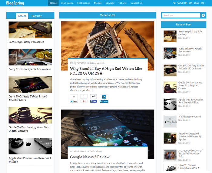 BlogSpring WordPress Theme