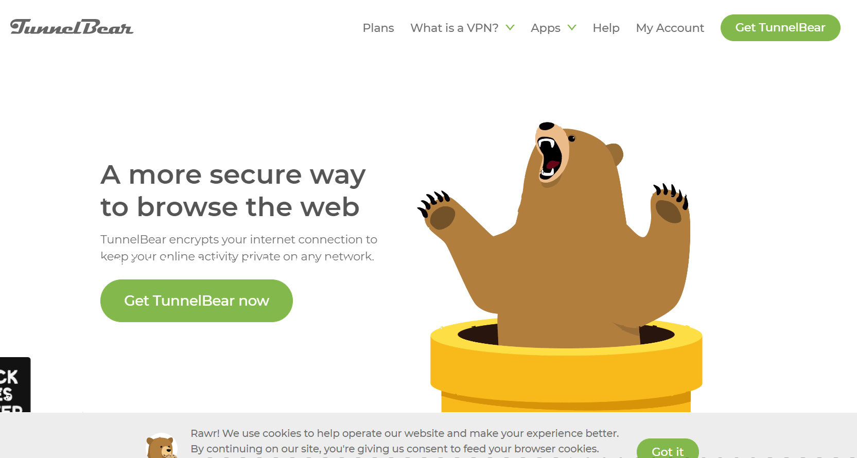 TunnelBear Review- Overview