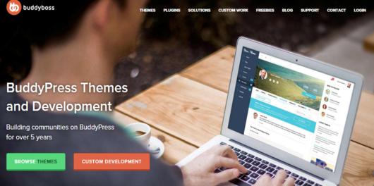 BuddyBoss BuddyPress Themes and plugin