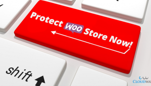 protect-woo-store-now