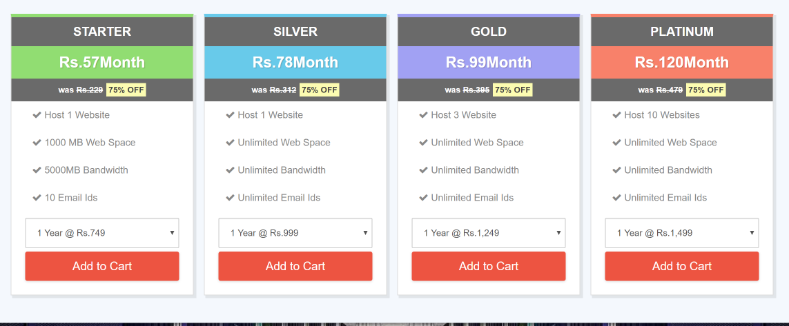 Microhost Hosting service providers in India