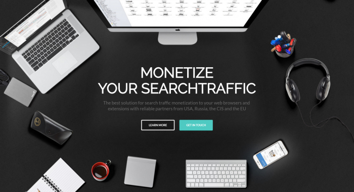 TNX monetize search network