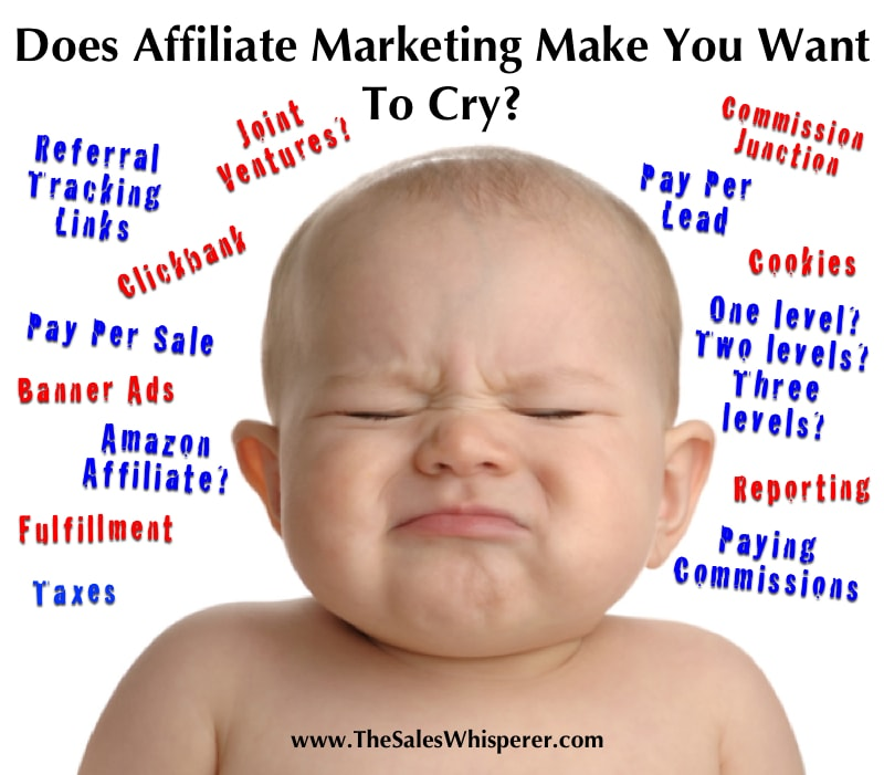 Automated Affiliate Marketing software