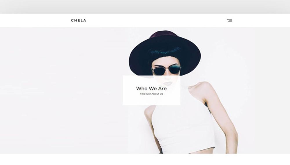 Modernize your Website with Chela – A Minimal Agency Theme WordPress Theme