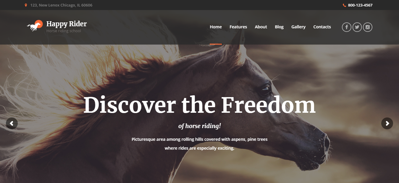 Happy Rider - WordPress Sports Theme