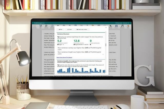 ProWritingAid Writing Tool Review