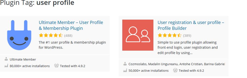 User Profile Plugin - Build a Travel Business Website