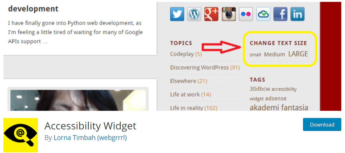 Accessibility Widget — Typography WordPress Plugins
