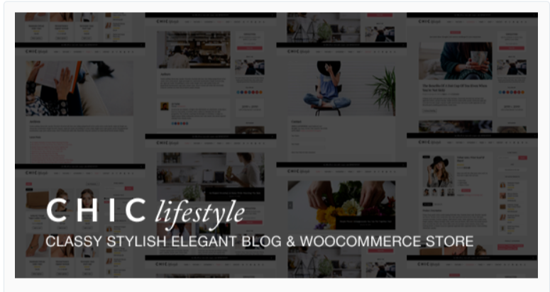 Chic - Fashion WordPress Themes