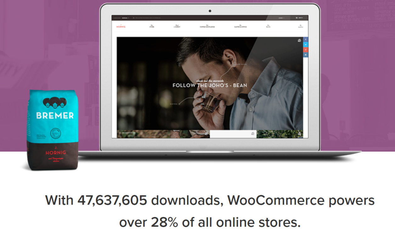 WooCommerce Coupon Codes - Stats of e-commerce stores