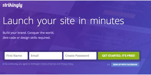 review for strikingly website builder