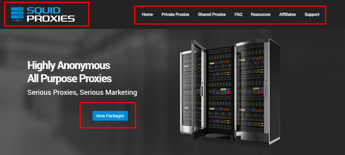 Squid proxies Review- Datacentre Proxy Services