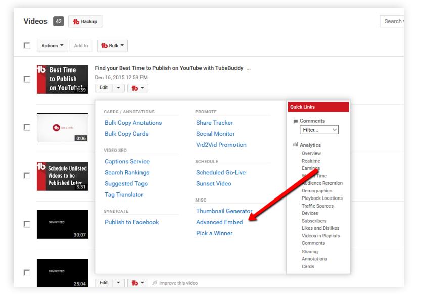 TubeBuddy Review- Advanced video Embedding