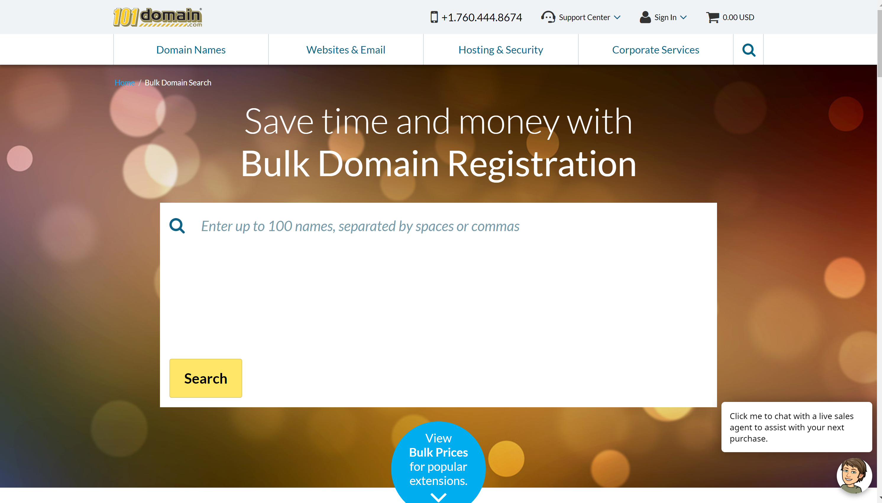 101domain website review