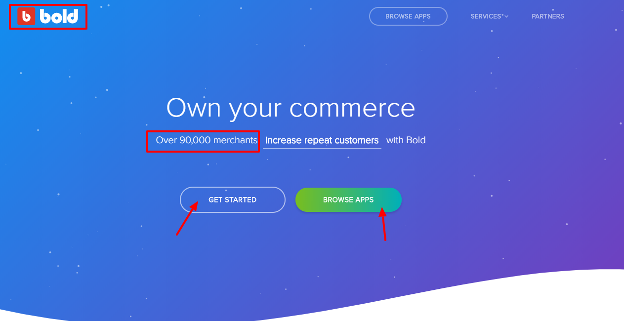Bold Commerce Review - Introduction