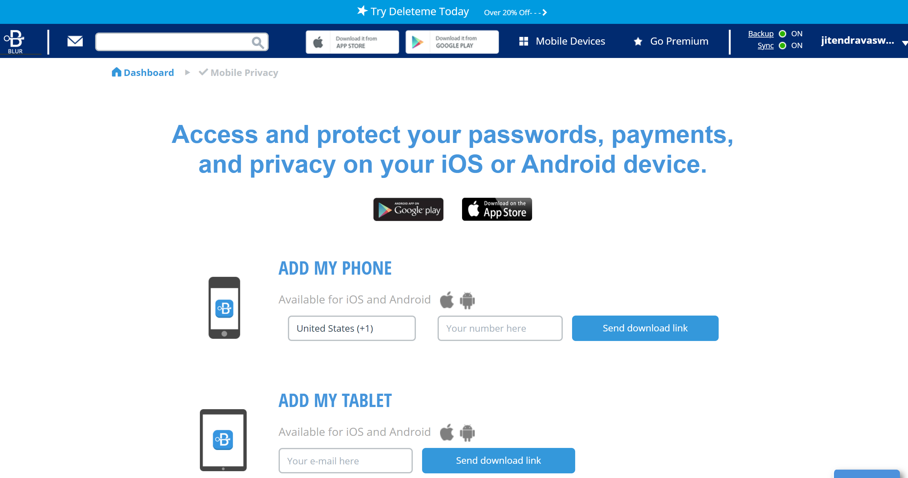 Abine Blur Password protection
