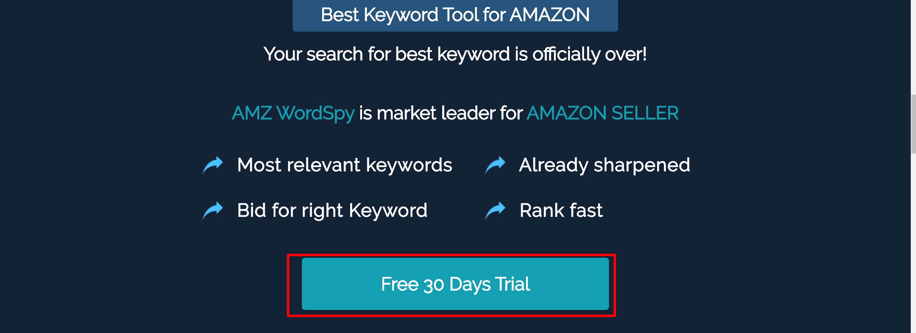 AMZ Wordspy pricing
