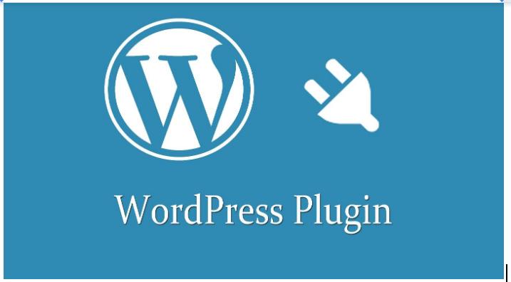 Ecommerce Case Study - WordPress Plugin
