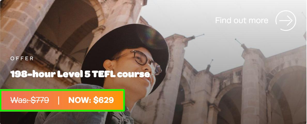 198 Hour TEFL Org Course