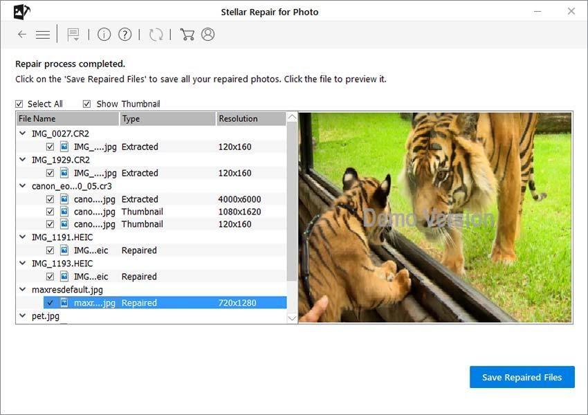 Photo Repair Online - Select Save Repaired Files