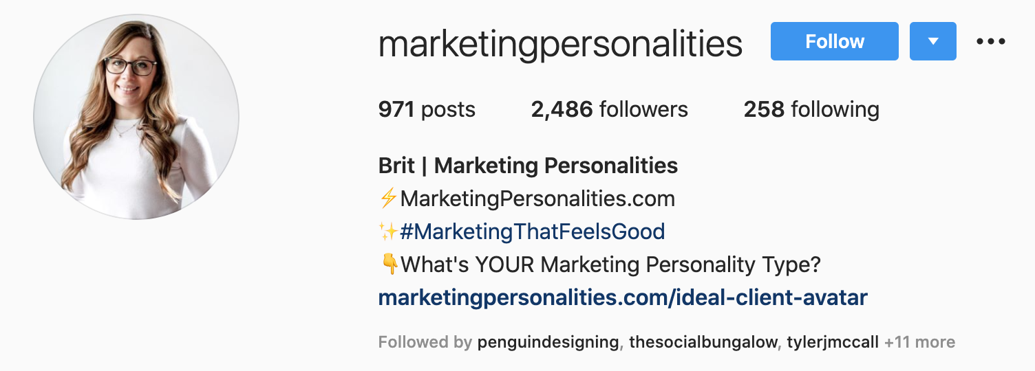 Write Perfectly Optimized Instagram Bio With Case Study & Examples.