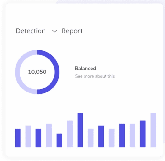 Detection Report