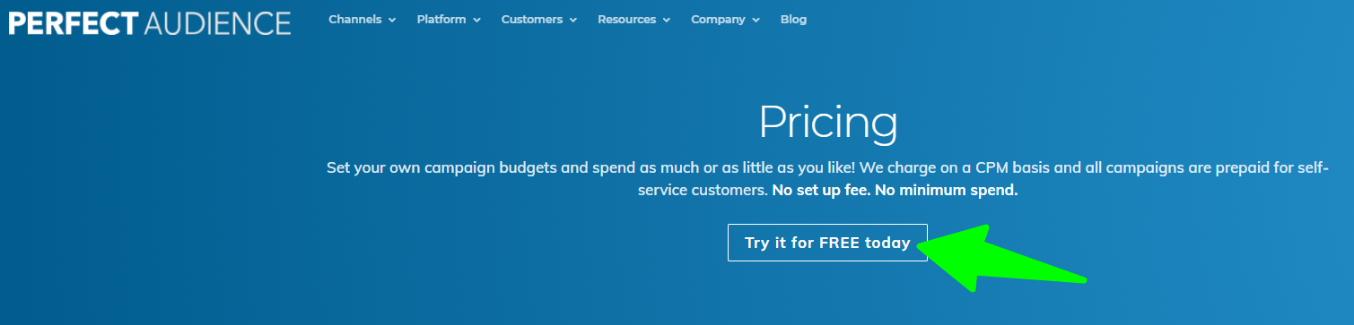 Pricing-Perfect-Audience