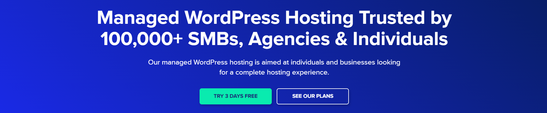 Cloudways-WordPress Hosting