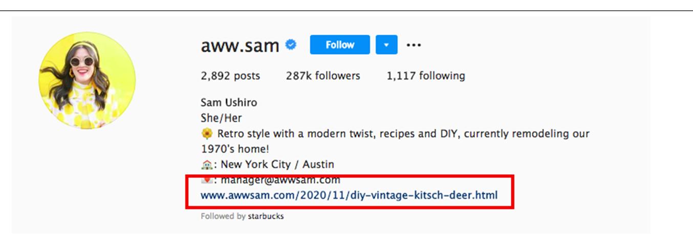 Instagram bloggers