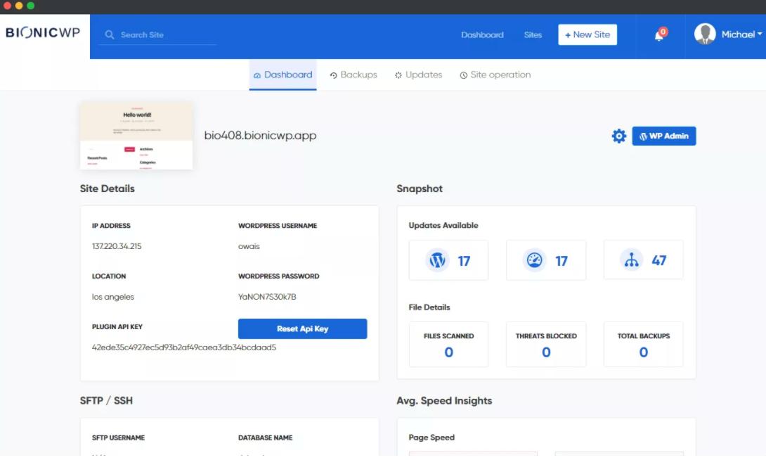 Site Management- BionicWP