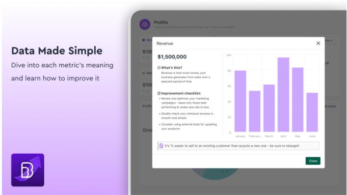 BeProfit-Review- Data Sample