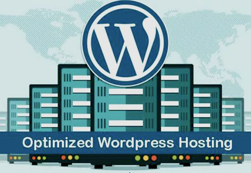 Wordpress hosting- nexcess vs kinsta