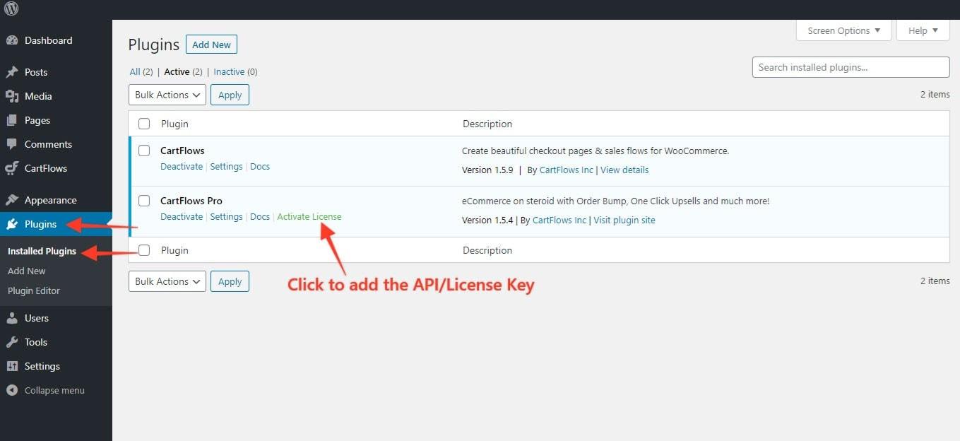 API Key License cartflows 3